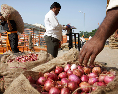onion-exports