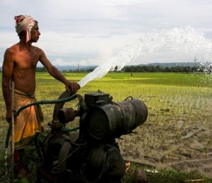50% diesel, seed subsidy to farmers in rain deficit areas