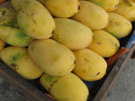 Health inspectors increasing checking artificially ripened mangos