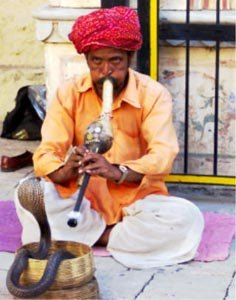 West Bengal's Snake Charmer