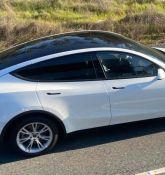 Tesla enjoying high demand for Model Y Standard Range in China: Reports