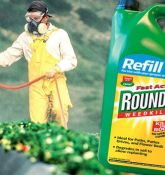 Germany announces ban on Glyphosate by 2023