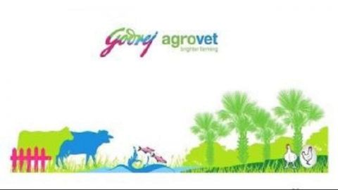 Ashwani Gujral: BUY Adani Ports Bandhan Bank, LIC Housing, Zee Entertainment and Godrej Agrovet