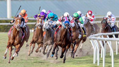 The Best Payment And Withdrawal Options For Horse Betting