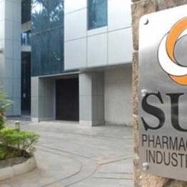 Ashwani Gujral: BUY Sun Pharma, Bharti Airtel Hindustan Unilever, TCS and Britannia Industries