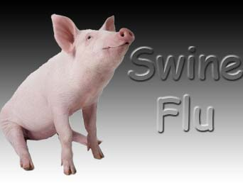 Goa said to have registered its first swine flu death