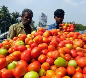 Rise in tomato prices leaves consumers exasperated