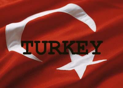 Turkish police arrest more than 40 Kurds suspected of links to PKK