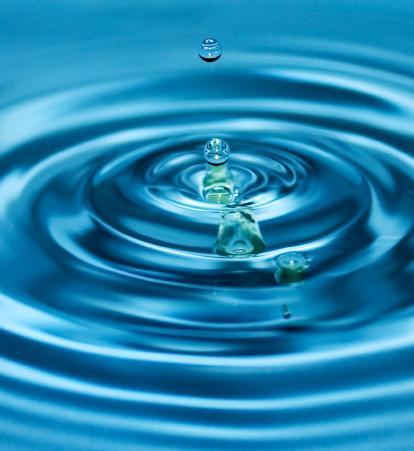 Аквариумисту следует знать, каков бывает состав воды и подходит ли этот...