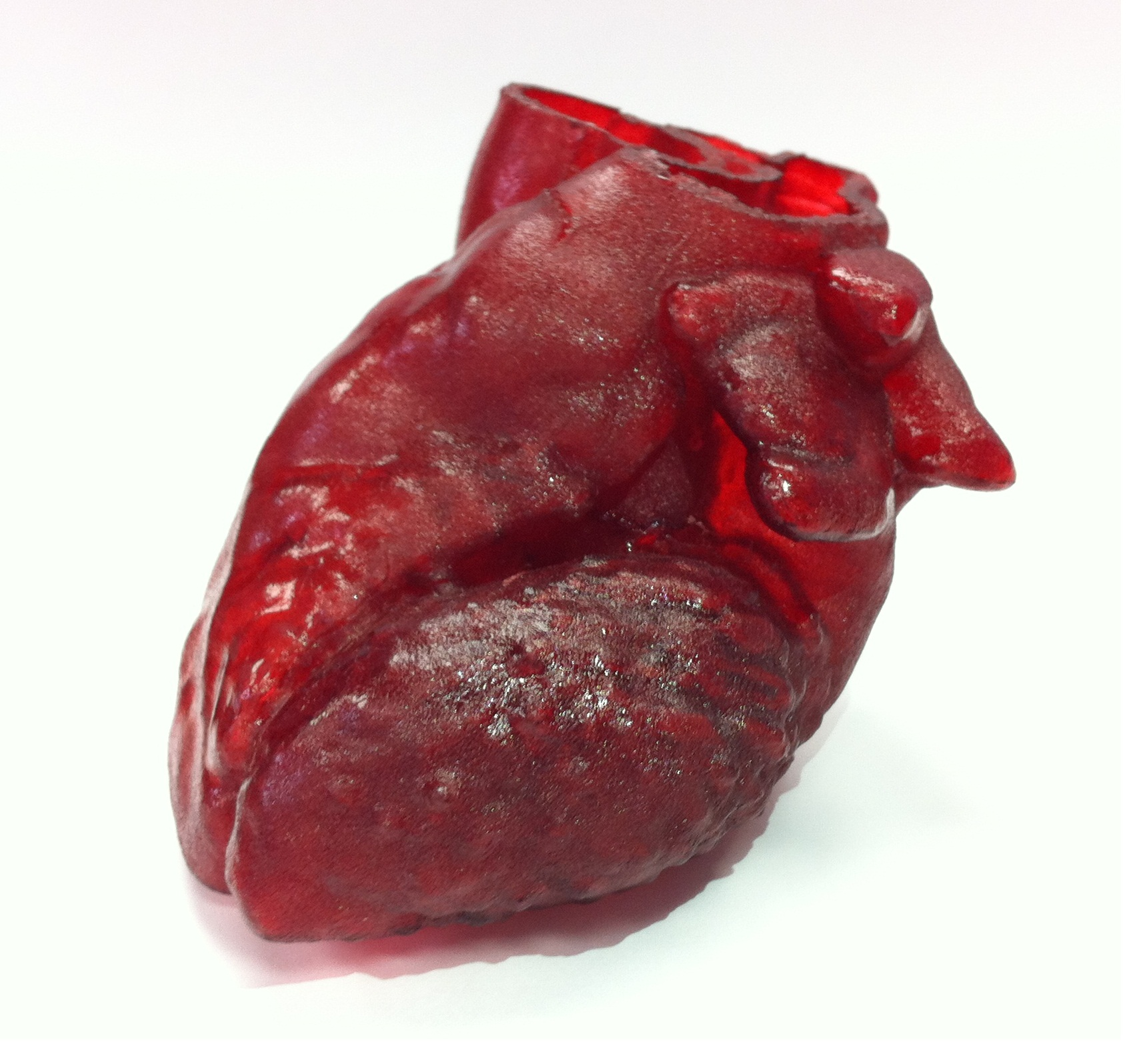 Researchers aim to build human hearts using 3-D printer