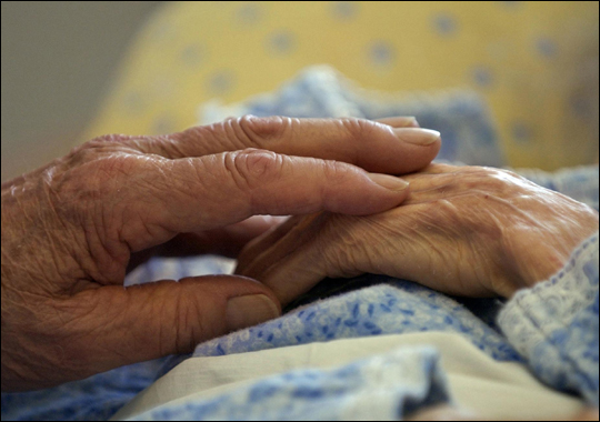 New mice study offers hope in the fight against Alzheimer''s