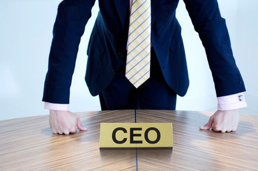 Babies born during summer `less likely to be CEOs`