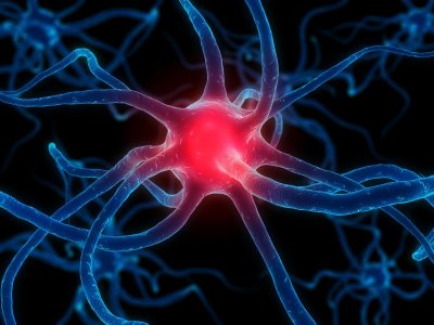 New model paves way for drugs to fight Parkinson''s disease