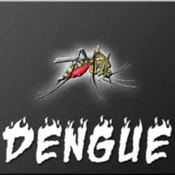 Pakistan to get insecticide from India to fight dengue