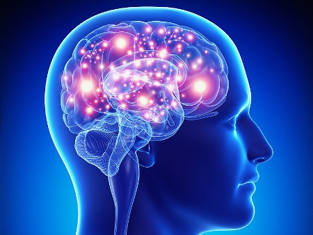 Scientists find association between memory mechanisms, resistance to epilepsy
