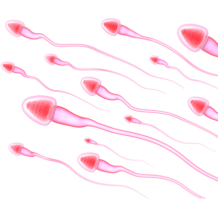 Multiple partners dna in sperm