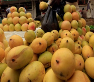 Mangoes can help lower blood sugar level in obese adults