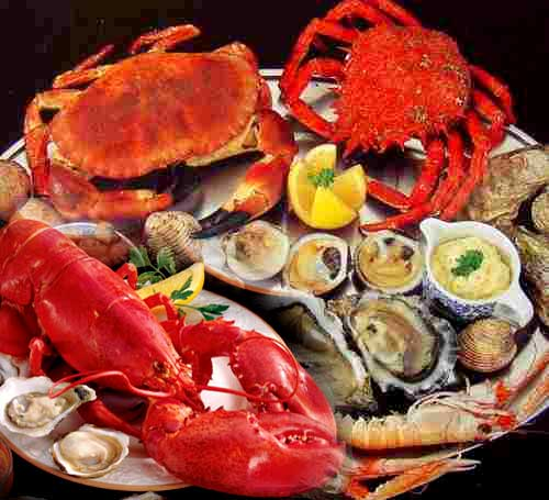 Seafood is latest craze of Kolkata foodies