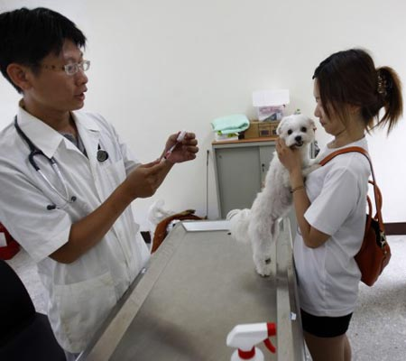 Taiwan on high alert over rabies outbreak