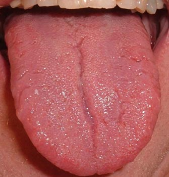 Taste buds your key to healthy aging