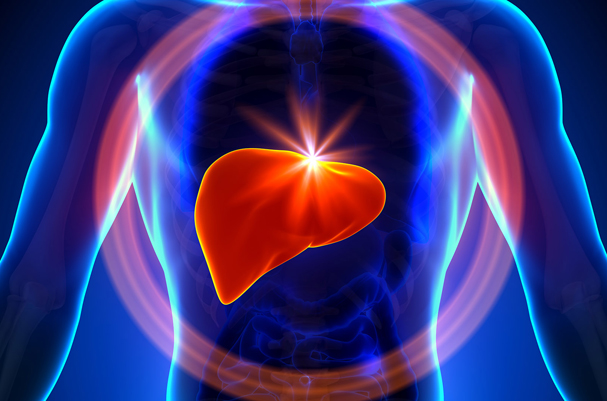 #WorldLiverDay: Understand your liver and prevent it from diseases
