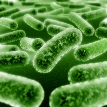 Incision site contamination by infection causing microorganisms