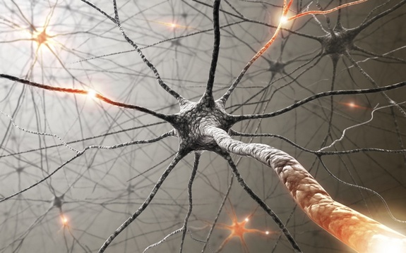 Nano particles protect brain from nerve disease