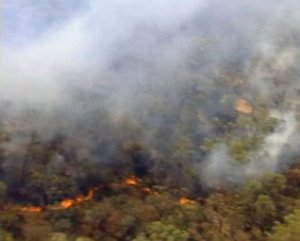 Australia's bushfires prompt health warnings