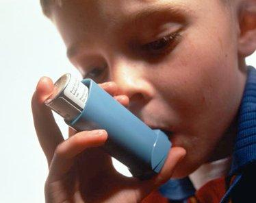 Inability to handle environmental exposures may cause asthma