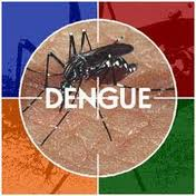 Orissa cancels doctors' leave as dengue spreads