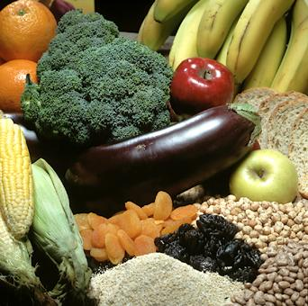 New forms of dietary fiber could be a boon to health | TopNews