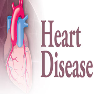 `Many urban women die due to heart disease'