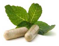China most likely to be affected by 2011 EU herbal medicine ban