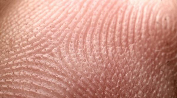 http://topnews.in/health/files/human-skin1.jpg