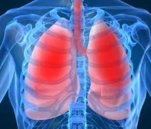 Vitamin E in canola and other oils linked to lung related problems