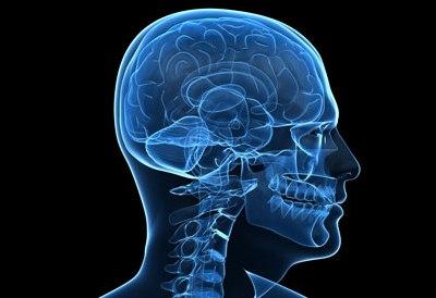 Study reveals past experiences affect recognition, memory