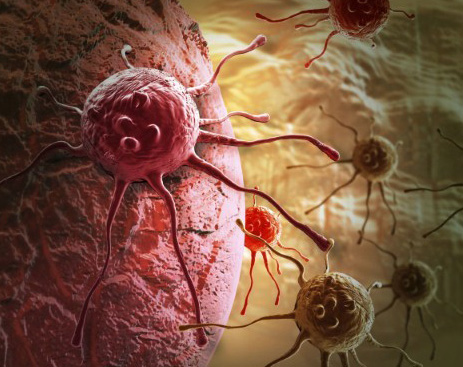 Revealed: How cancer cells spread