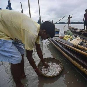 Sri Lankan courts order release of 163 Indian fishermen