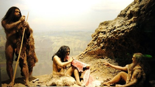 Washington  May 28   Pre-humans living in East Africa 4 4 million    Early Human Beings