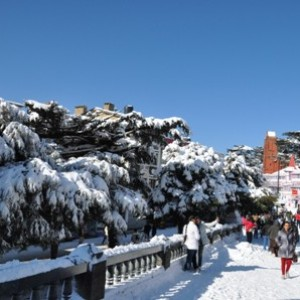 Fresh spell of snow blankets tourist hotspot Shimla