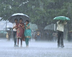 Madhya Pradesh receives average of 103 cm rainfall in last 24 hours