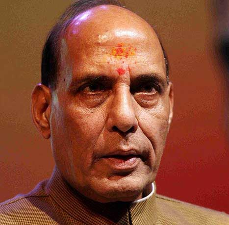 BJP will get over 300 seats in elections: Rajnath Singh