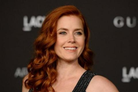 Netflix explores possibility of 'The Woman in the Window' with Disney and Amy Adams