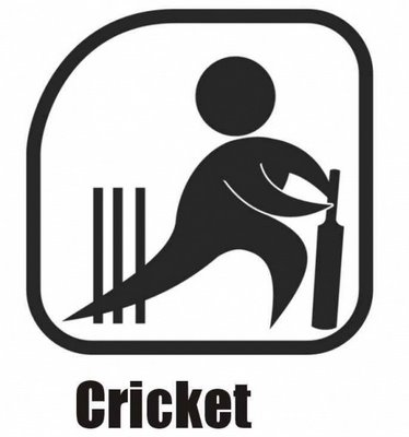 new zealand cricket logo. new zealand cricket logo. cricket series next year