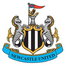 Newcastle seals deal with Cisse