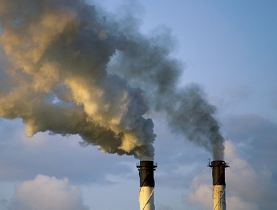 Carbon dioxide, plants turned into renewable plastic