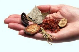 Molecular secrets of ancient Chinese herbal remedy discovered