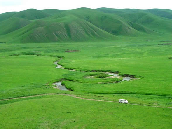 Diversity may keep grasslands resilient to drought, climate change