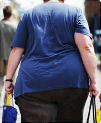 Obesity may be triggered by `genes or environment`