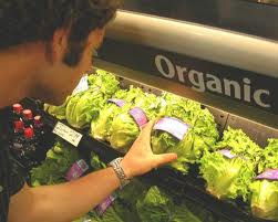 Organic foods no more nutritious than conventional alternatives